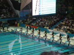 Seating - Melbourne Commonwealth Games