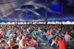 50 x 80 Majestic - Townsville North Queensland Carols by Candlelight 2015